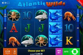 atlantic-wilds-img