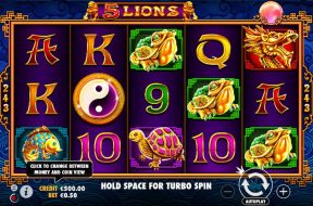 5-lions-img