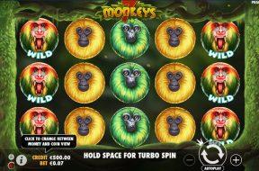 7-monkeys-img