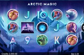arctic-magic-img