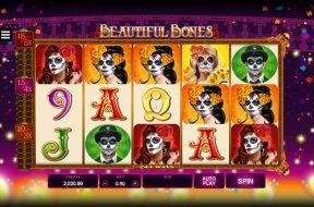 beautiful-bones-img