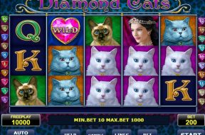 diamond-cats-img