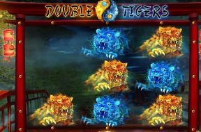 double-tigers-img