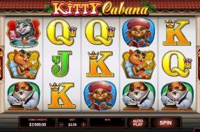 kitty-cabana-img