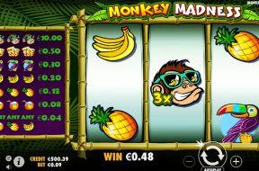 monkey-madness-img
