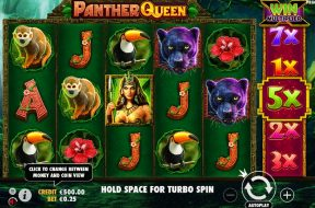 panther-queen-img