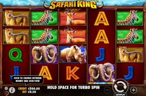 safari-king-img