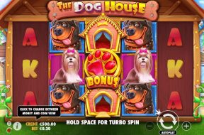 the-dog-house-img