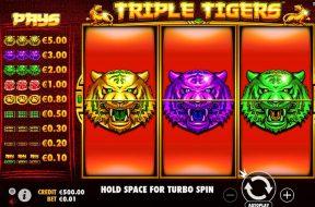 triple-tigers-img