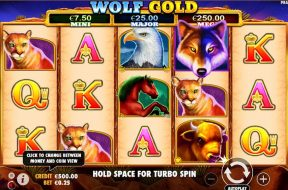 wolf-gold-img