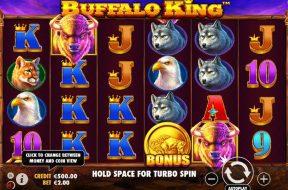 buffalo-king-img