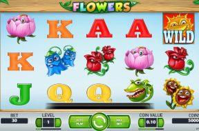 flowers-img