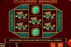 chinese-spider-img